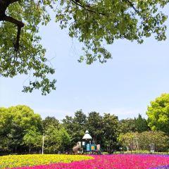 Minxing Park User Photo