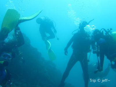 Andromeda Divers