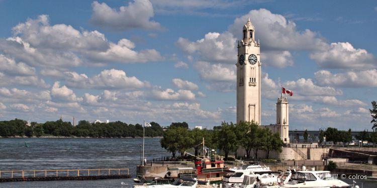罗讷河口图片