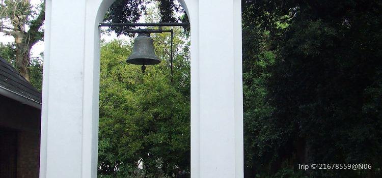 Durban Botanical Gardens2