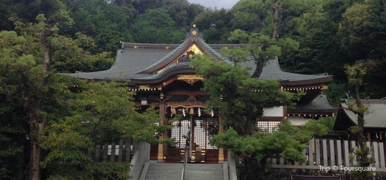Osakasayama