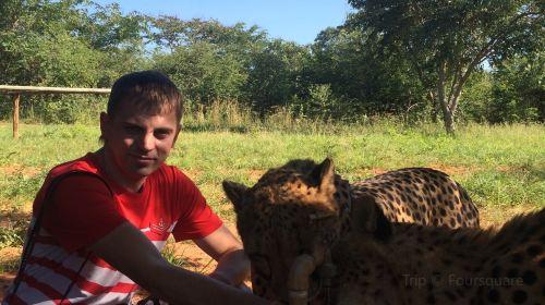 Mukuni Big 5 Safaris