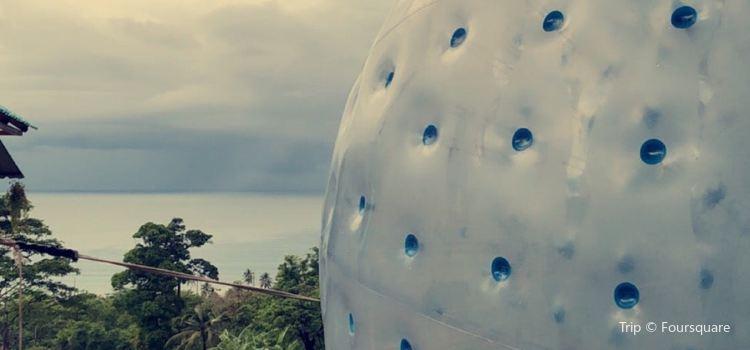 Rollerball Zorbing Phuket2