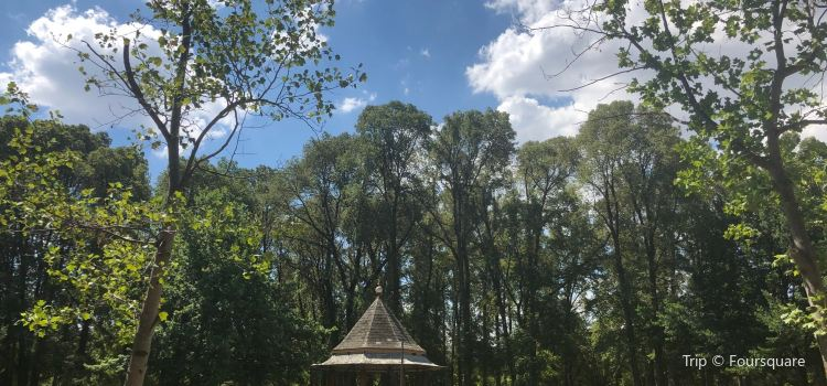 Glebe Park3