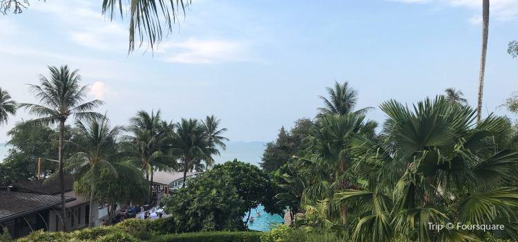 The Village Coconut Island3