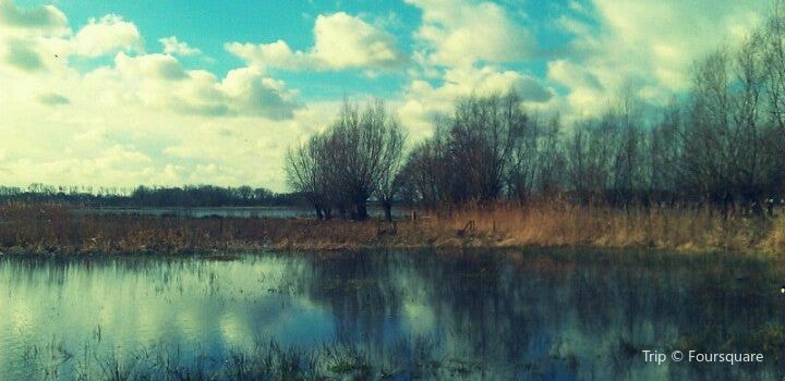 Bourgoyen-Ossemeersen Nature Reserve3