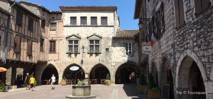 Castelnau-de-Montmiral1