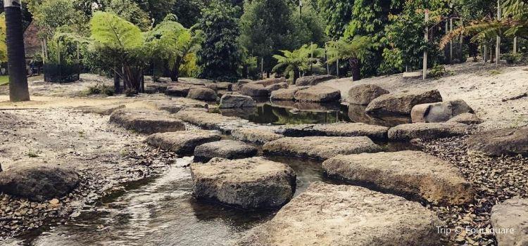 Fitzroy Gardens3