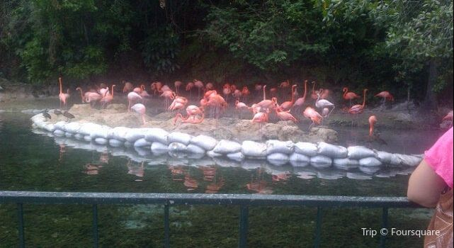 Parque Zoológico Nacional2