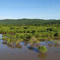 雁鳴湖國家級自然保護區用戶圖片