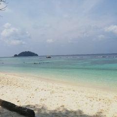 巨獅島用戶圖片