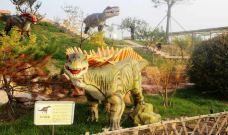 恐龙主题公园-石家庄-用户61