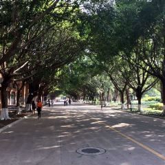 Guangdong University of Foreign Studies User Photo