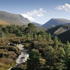 Cairngorms National Park User Photo