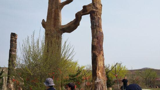 차이양 백악기 국가 지질공원