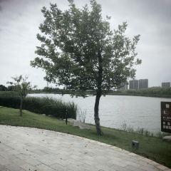 龍遊河生態公園用戶圖片