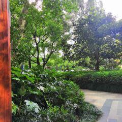 Shuangshi Park User Photo