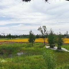 Jianshui River National Wetland Park User Photo