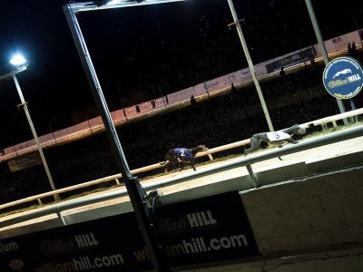 Sunderland Greyhound Stadium
