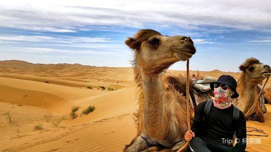 騰格裡沙漠