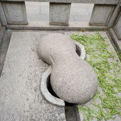 豐泉古井用戶圖片