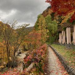 定山溪溫泉用戶圖片