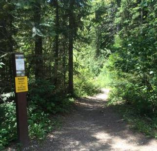 Mount Fernie Provincial Park