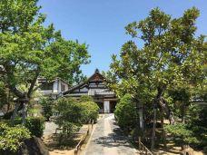 天龙寺-京都-M36****3725