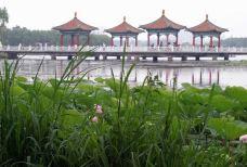 南湖公园-长春-Todyao