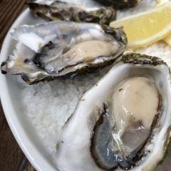 Sydney Cove Oyster Bar User Photo