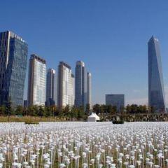 Songdo Central Park User Photo