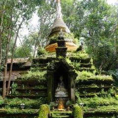 Wat Pha Lat User Photo