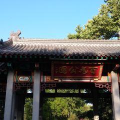 Bai Garden User Photo
