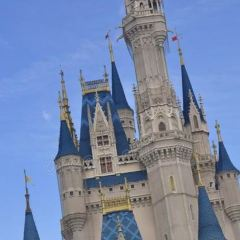 Walt Disney World User Photo