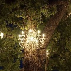 The Chandelier Tree User Photo