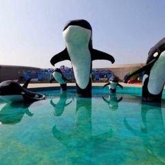 Haizhouwan Ocean Park User Photo