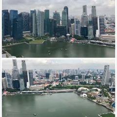 싱가포르 국립 도서관 여행 사진