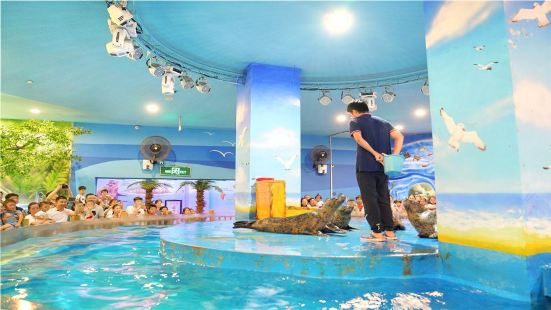 Jinyi City Aquarium