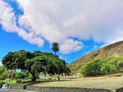 하와이 네이쳐 센터