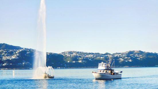 Carter Fountain