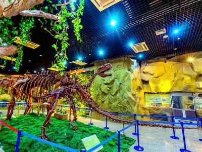 新疆地質鉱産博物館
