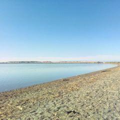 艾裡克湖用戶圖片