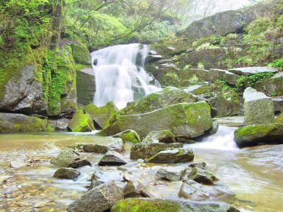 Muwang National Forest Park
