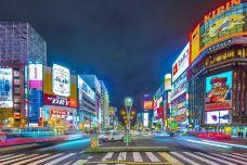 薄野-札幌-是条胳膊