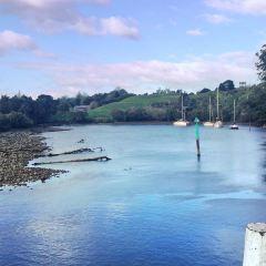Te Waihou Walkway用戶圖片