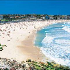 Manly Beach User Photo