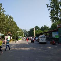 Boxing County Dayuzhang Forest Park User Photo
