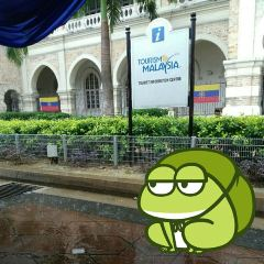 獨立廣場用戶圖片