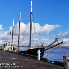 Halifax Waterfront Boardwalk User Photo