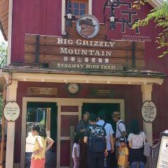 Big Grizzly Mountain Runaway Mine Cars User Photo